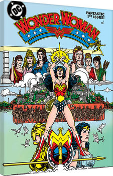 Tela  Wonder Woman - Fantastic
