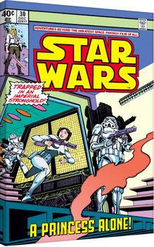 Star Wars - A Princess Alone Toile