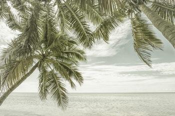Valokuvatapetti FLORIDA Vintage Oceanview