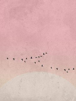 Valokuvatapetti moonbird5