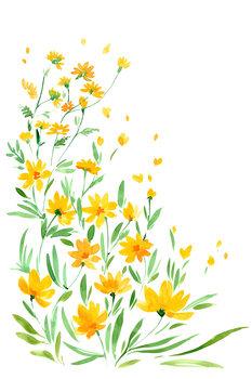 Valokuvatapetti Yellow watercolor wildflowers