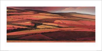 Jonathan Sanders - Afternoon Shadows Art Print