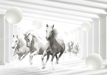 Chevaux Sphères blanches Poster Mural