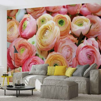 Fleurs Peonies Couleurs Poster Mural