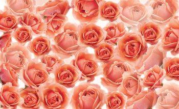 Fleurs Roses Rouge Poster Mural