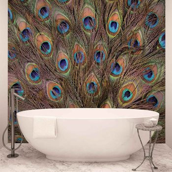 Peacock Feathers Poster Mural