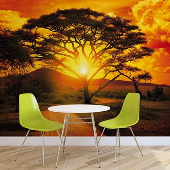 Sunset Africa Nature Tree Poster Mural