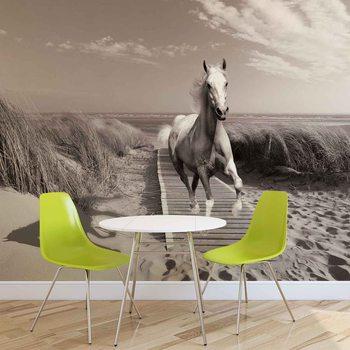 White Horse Beach Grey Poster Mural