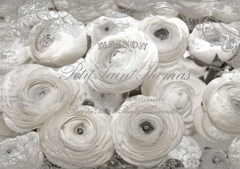 White Roses Vintage Effect Poster Mural
