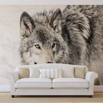 Wolf Animal Poster Mural
