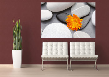 ACHIM SASS -  heart among stones Wallpaper Mural