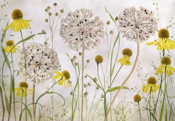 Alliums And Heleniums Wallpaper Mural