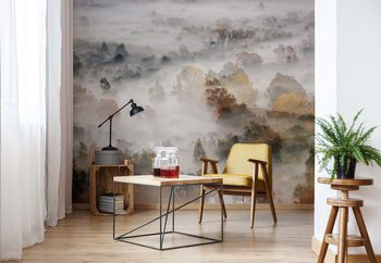 Autumn Colours In The Fog Wallpaper Mural
