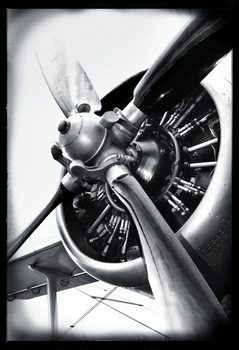 Aviator - Aeroplane Wall Mural