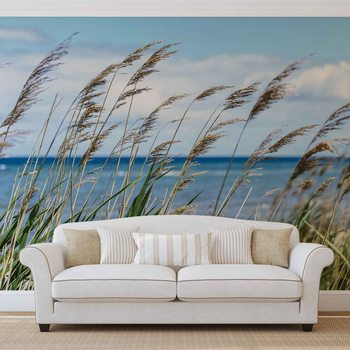 Beach Sea Sand Nature Wallpaper Mural