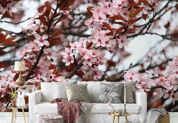 Beautiful Blossoms Wallpaper Mural
