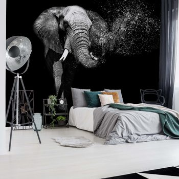 Black And White Elephant Wallpaper Mural