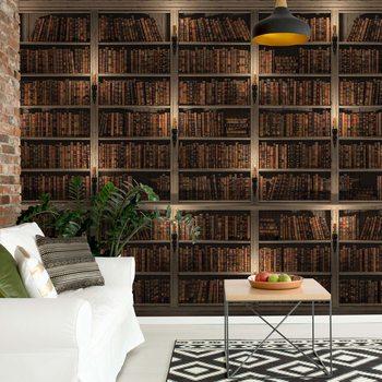 Bookshelves Wallpaper Mural