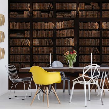 Bookshelves Wallpaper Mural