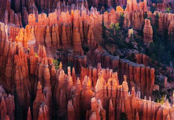 Bryce Canyon At Sunset Wallpaper Mural
