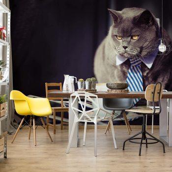 Cat Boss Wallpaper Mural