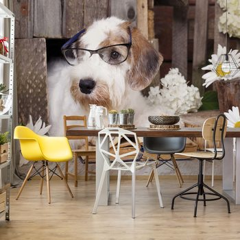 Clever Dog Wallpaper Mural