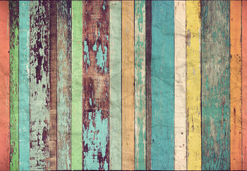 Colored Wooden Wall Mural