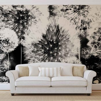 Dandelion Black White Wallpaper Mural