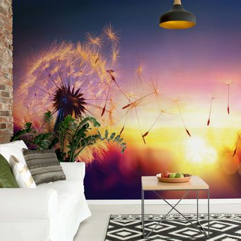 Dandelion Sunset Wallpaper Mural