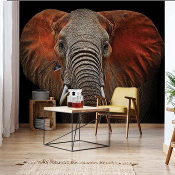 Elephant Wallpaper Mural
