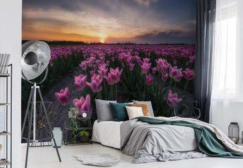 Field Of Tulips Wallpaper Mural