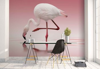 Flamingo Wallpaper Mural