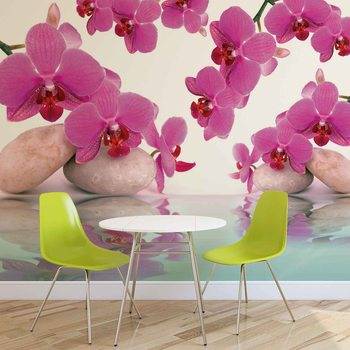 Flowers Orchids Wallpaper Mural