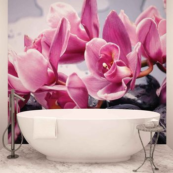 Flowers Orchids Stones Zen Wallpaper Mural