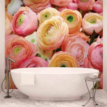 Flowers Peonies Colours Wallpaper Mural