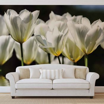 Flowers Tulips Wallpaper Mural