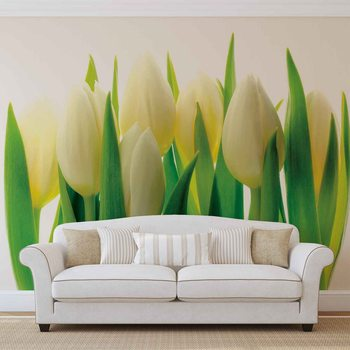 Flowers Tulips Nature Wallpaper Mural