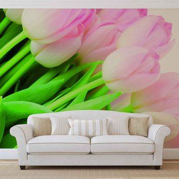 Flowers Tulips Nature Wallpaper Mural