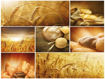 Food Bread Wallpaper Mural