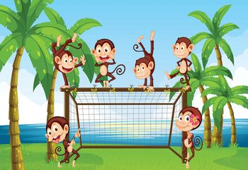 Football Monkeys Cartoon Wallpaper Mural