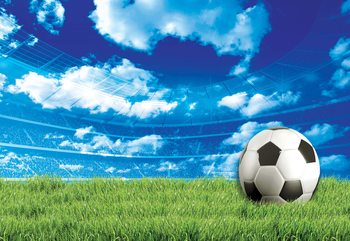 Football Stadium Blue Sky Wallpaper Mural