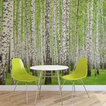 Forest and Woods Wallpaper Mural
