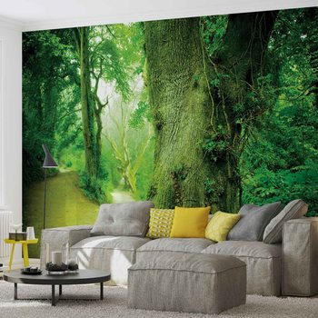 Forest Nature Trees Wallpaper Mural