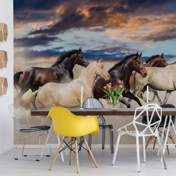 Galloping Horses Wallpaper Mural
