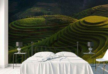 Gold Rice Terrace Wallpaper Mural