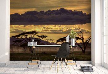 Good Evening Tanzania Wallpaper Mural