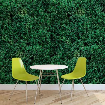 Grass Texture Wallpaper Mural