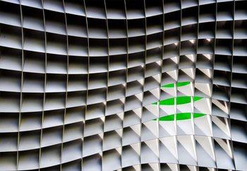 Green Beyond Wallpaper Mural