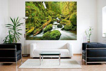 Green Canyon Cascades Wallpaper Mural