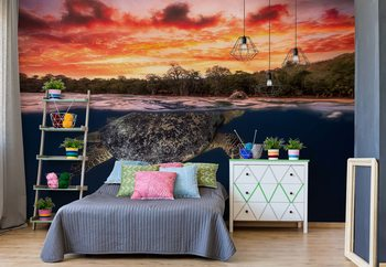 Green Turtle And Fire Sky Wallpaper Mural
